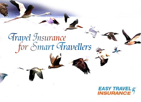 societe easy smart travel